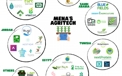 I have a (smart) farm in… the Middle East